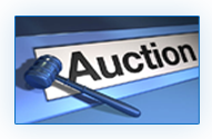 Auction Transport Services